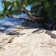 The Fiji IOTA DXpedition team is currently active on Tavewa Island in the remote Yasawa Islands— a spectacular archipelago of about 20 volcanic islands in the Western Division of Fiji […]